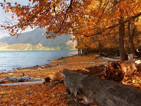 Fall In Waterton 2