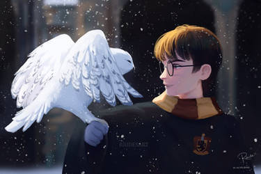 Harry And Hedwig by RaidesArt