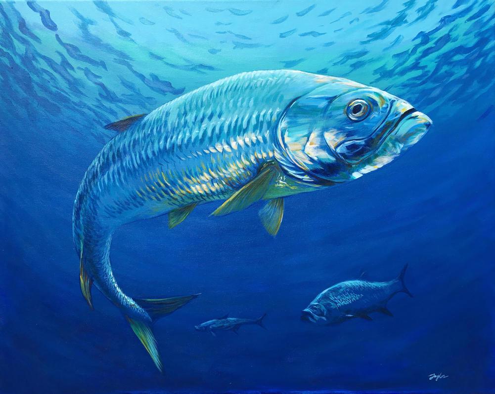 Deep Blue Tarpon by samtaylor5