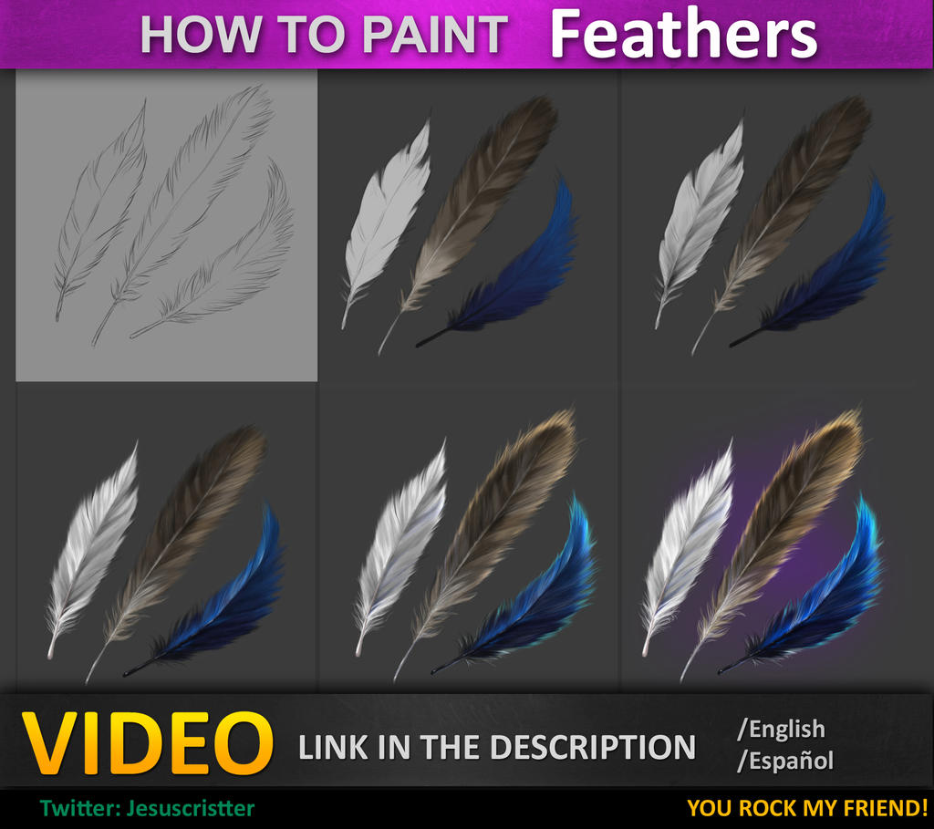 how to draw feathers on a bird in illustrator
