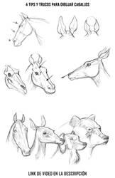 Como dibujar Caballos - Dibujo animal 2