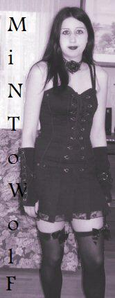 Mintowolf's Profile Picture
