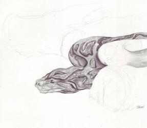 python WIP by Mintowolf