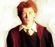 Harry Potter serie - Ron
