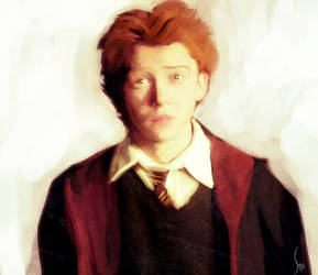 Harry Potter serie - Ron by sab-m