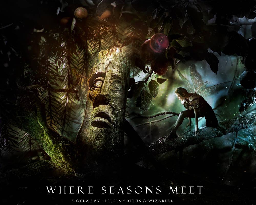 Where Seasons Meet