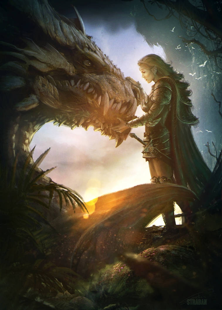 Elf warrior and the dragon