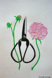 Cut beauty by artbyellie