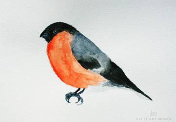 Bullfinch by artbyellie