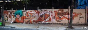 Graffiti LunaLee + Skane