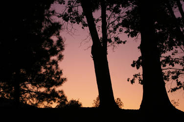 dusk by LineBendergirl