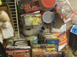 Bibliophile Bunny Rabbit