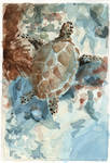 Underwater Seaturtle - Sketch