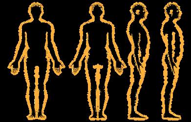 Human Body by elitassj4