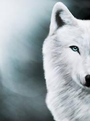 Arctic Wolf by Ilada-Jefiv