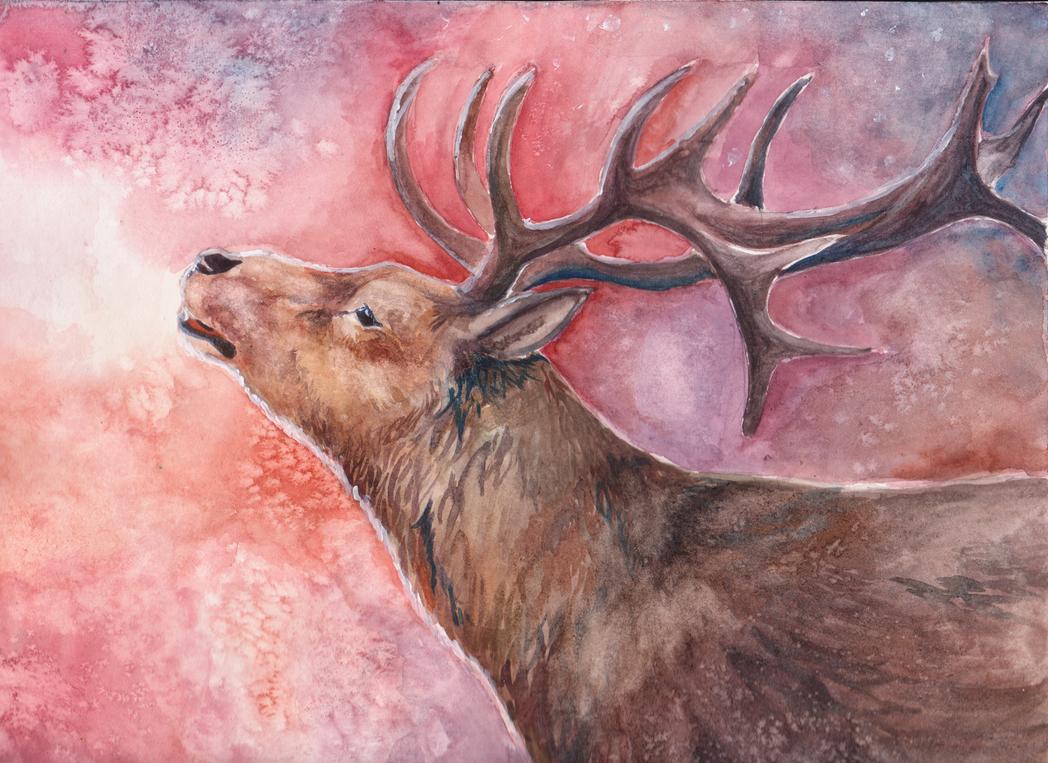 Deer by Elzux