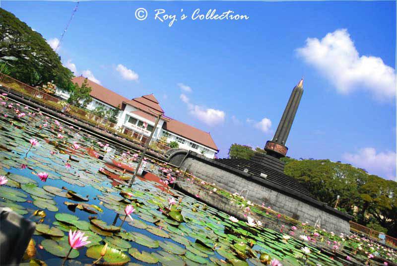 Water Lilies of Tugu Malang by RoyWicaksono