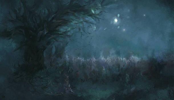 Cradle Lunar (phase I)