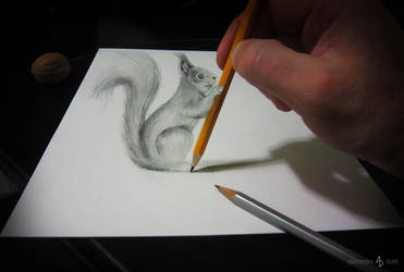 Squirrel with pencil