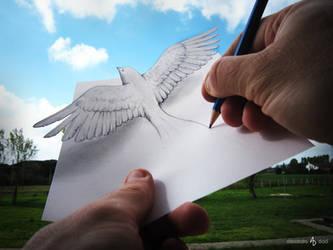 Bird by AlessandroDIDDI