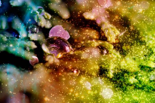 sushibird.com - space bubblegum
