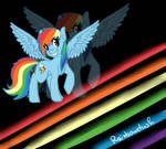 ..:Rainbowdash:..