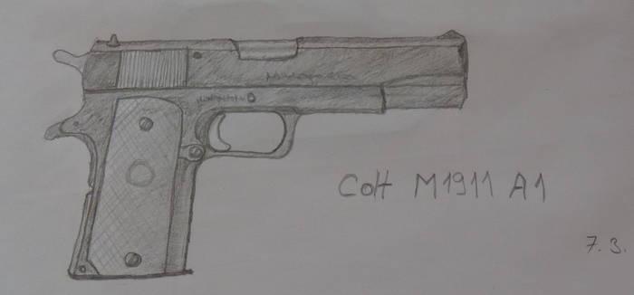 Colt by jablar