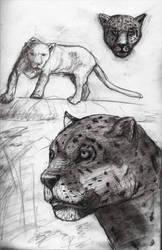 Jagu free sketch by jablar