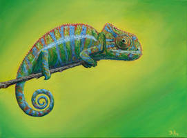 El camaleon by jablar