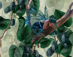 Mulberry Fairy by SpiritOnParole