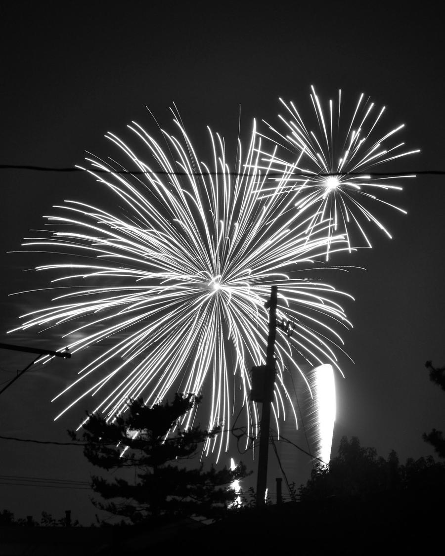 Fireworks 6-Black and white by Rayvenstar on DeviantArt