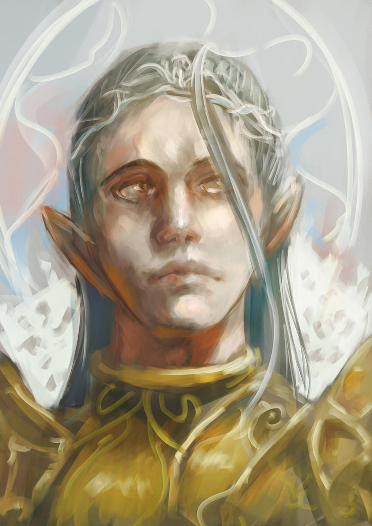 Elven king by gallant11101110