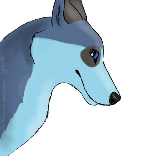 SilvyTheFox's Profile Picture