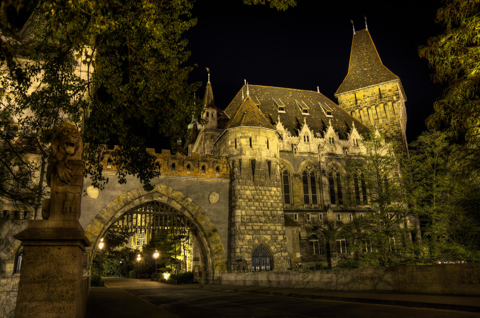 Vajdahunyad Castle II, Budapest by roman-gp