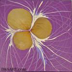 Dry Flowers 8