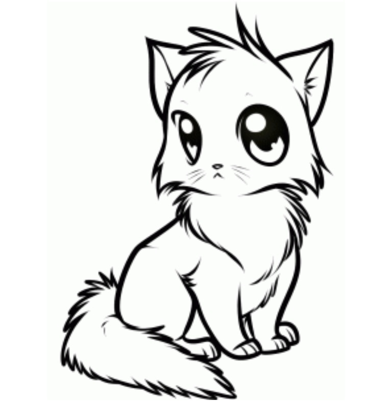 Line Art Kitten : Cat line art by ask wolf ciel on deviantart