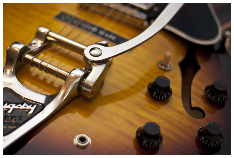 Gibson ES 335 Bigsby 1 By Dingleberry88
