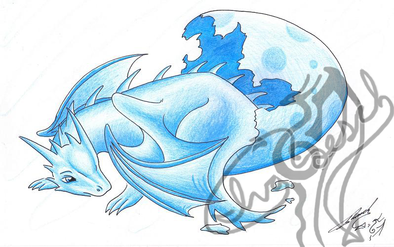 baby ice dragon coloring pages - photo#36