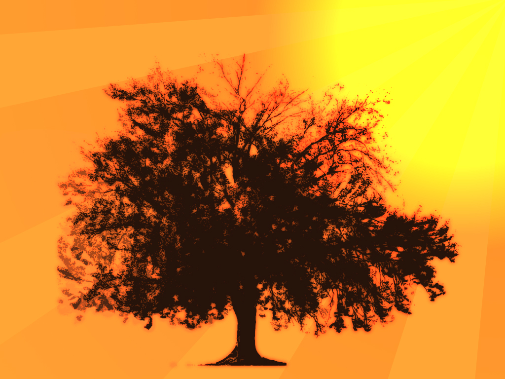 Simple tree orange background by Vamrek