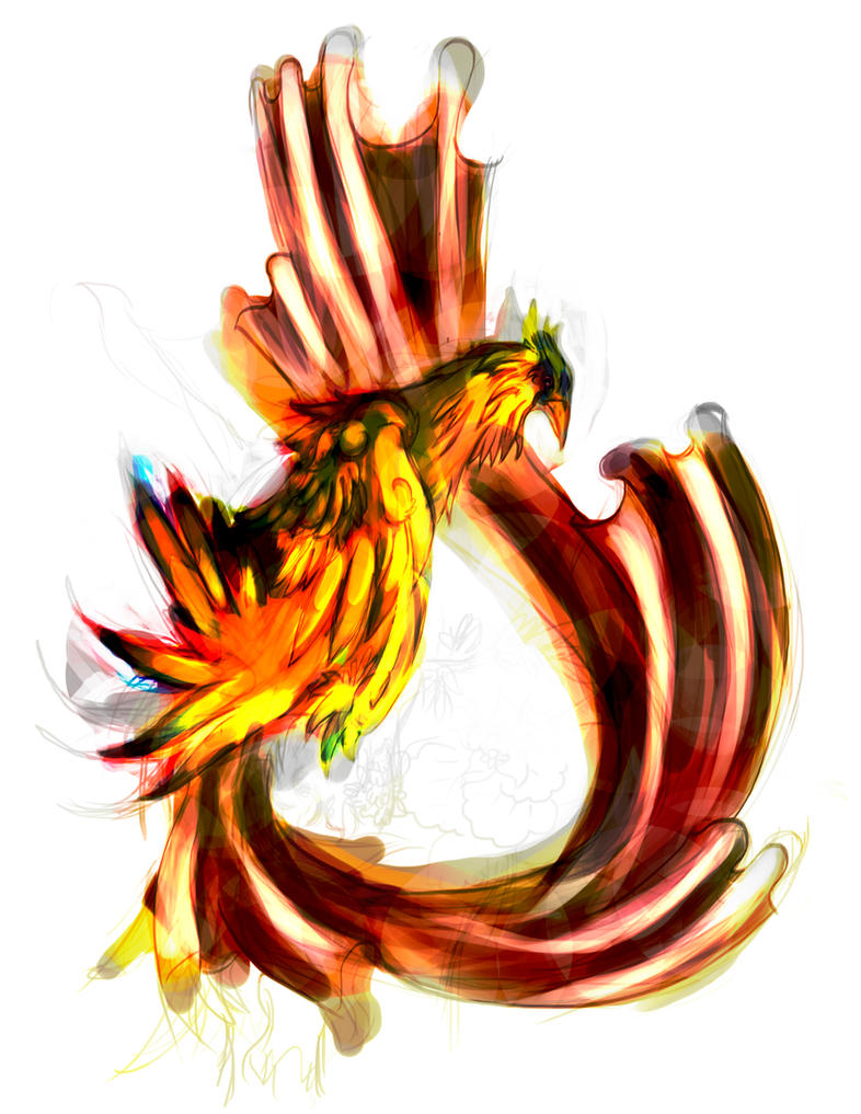 W.I.P Bird I by momoslittlespace
