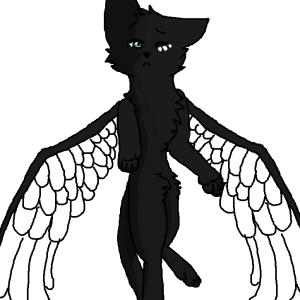 warriorcatswanart's Profile Picture