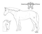 P2U - American Warmblood Lineart