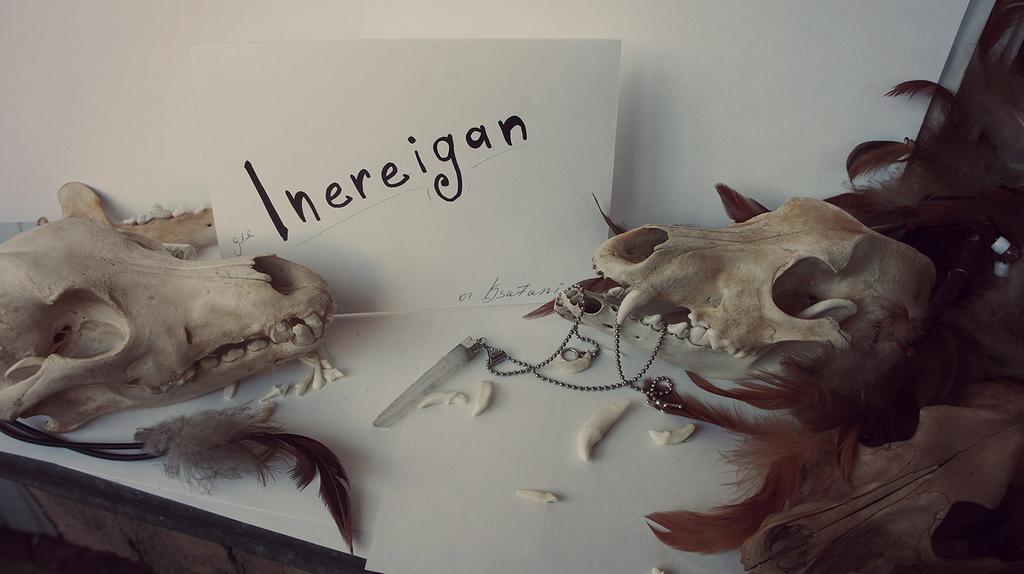 Inereigan's Profile Picture