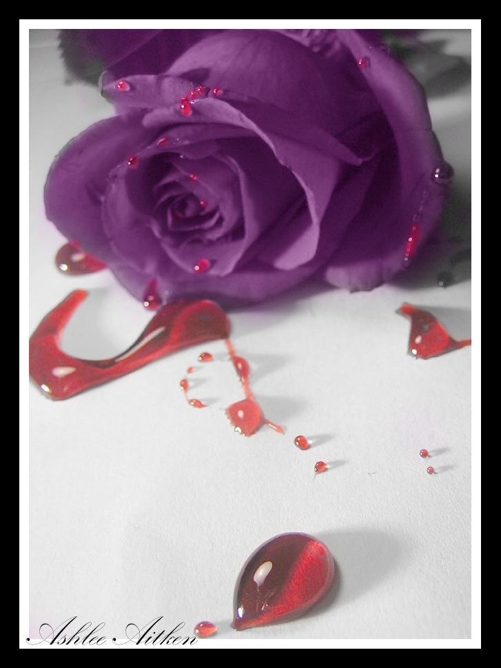 Purple by ashlee7307