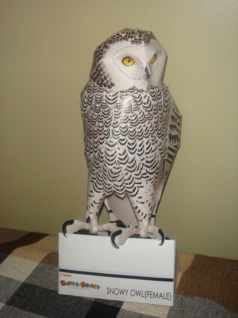 Snow owl papercraft by elfbiter on deviantart snow owl papercraft by elfbiter jeuxipadfo Image collections