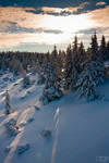 winter mood by RaumKraehe