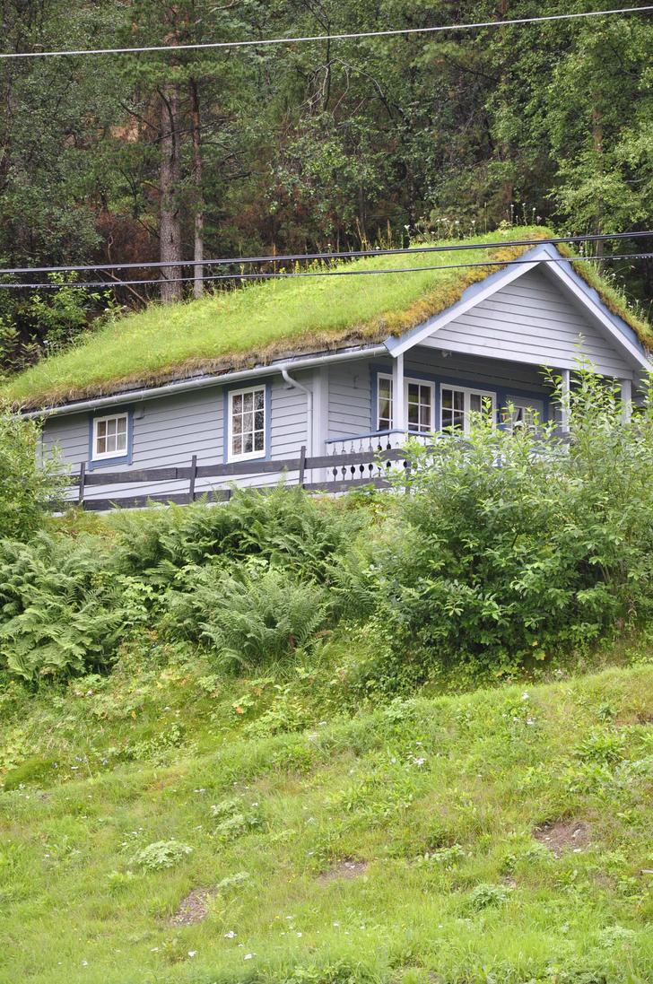 Grass house by Dracona666STOCK