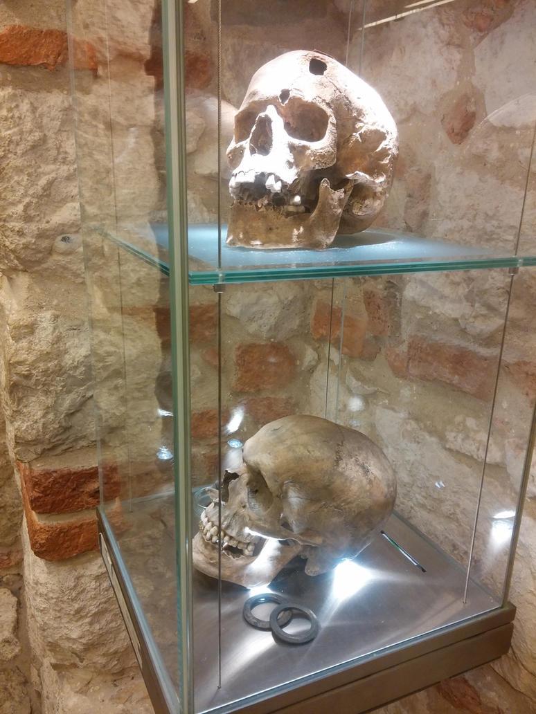 Skulls by Dracona666STOCK