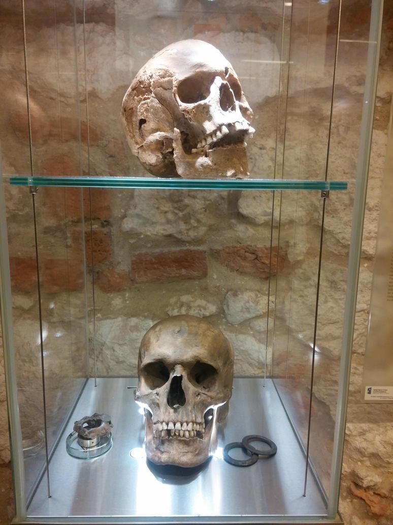 Skulls 2 by Dracona666STOCK