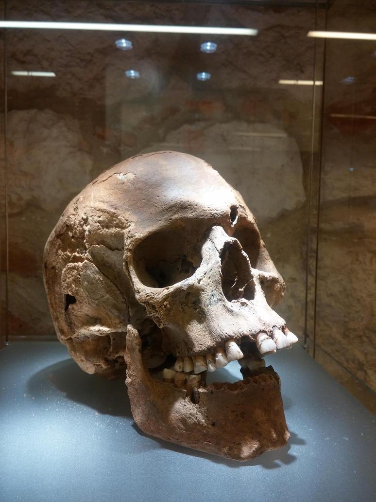 Skull by Dracona666STOCK